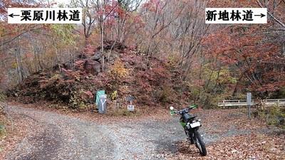 栗原川林道6.JPG