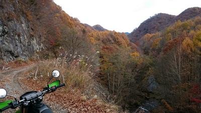 栗原川林道8.JPG